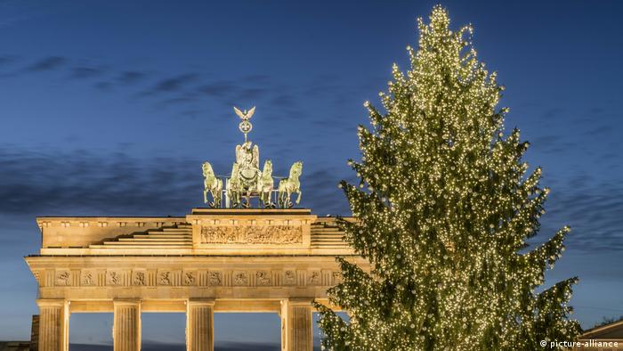 Weihnachtsbaum am Brandenburger Tor, Berlin (picture-alliance)