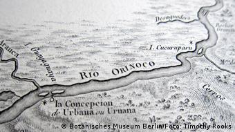 Desenho do rio Orinoco