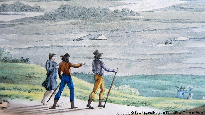 Alexander von Humboldt e sua equipe no Equador em 1801