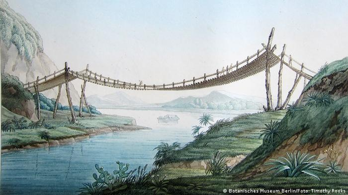Zeichnung der Seilbrücke bei Penipe, Ecuador, 1802