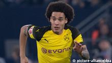 Axel Witsel (picture-alliance/dpa)