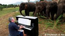 Musik für Elenfanten