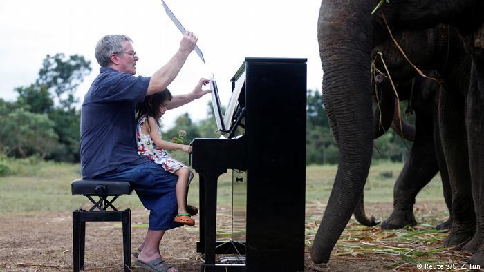 Musik für Elenfanten (Reuters/S. Z. Tun)