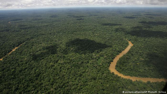 La fiebre del oro negro amenaza los tesoros del Parque Natural Yasuní