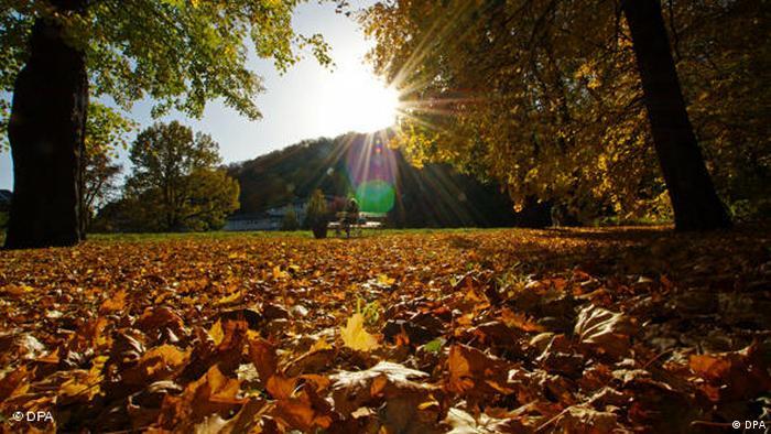 Herbst kommt flashgalerie Woche 37_09