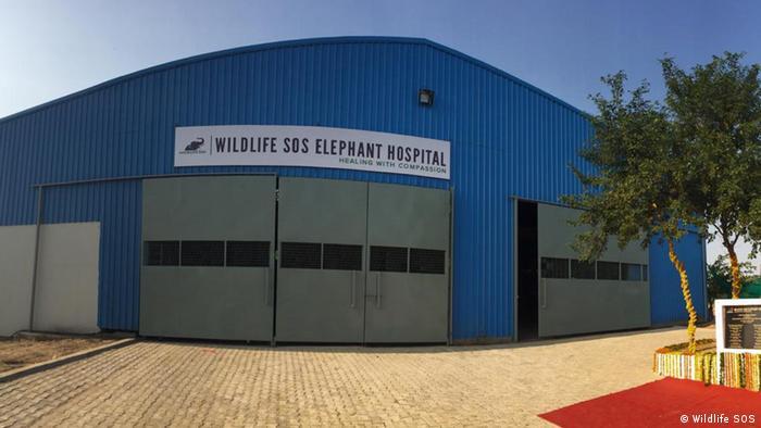 Elefanten-Krankenhaus Wildlife SOS Indien (Wildlife SOS)