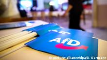 Flags bearing the logo of the Alternative for Germany party sit on a table during a regional party conference for the AFD in Bavaria (picture-alliance/dpa/D. Karmann)