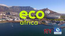 DW Eco Africa (Sendungslogo mit Partnerlogos englisch)