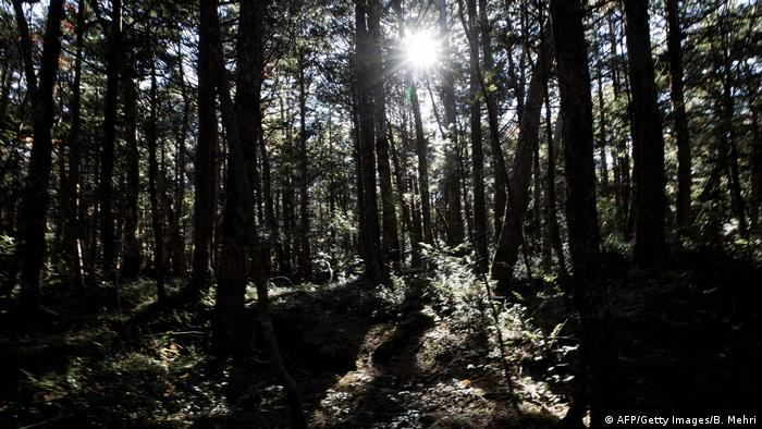 Aokigahara-Wald Suicide Forest Japan Kyochi Watanabe (AFP/Getty Images/B. Mehri)