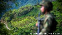 ARCHIV 2017 *** TOPSHOT - A soldiers stands guard in a coca field in Pueblo Nuevo, in the municipality of Briceno, Antioquia Department, Colombia, on May 15, 2017. The Colombian government and the Revolutionary Armed Forces of Colombia (FARC) leftist guerrillas inaugurated a plan to eradicate coca plantations and replace them with legal crops. / AFP PHOTO / Raul ARBOLEDA (Photo credit should read RAUL ARBOLEDA/AFP/Getty Images)