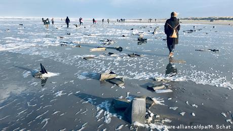 У Північному морі цілеспрямовано шукають сотні контейнерів
