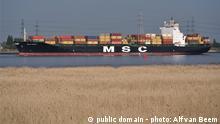 MSC Mandy, im Hafen von Antwerpen