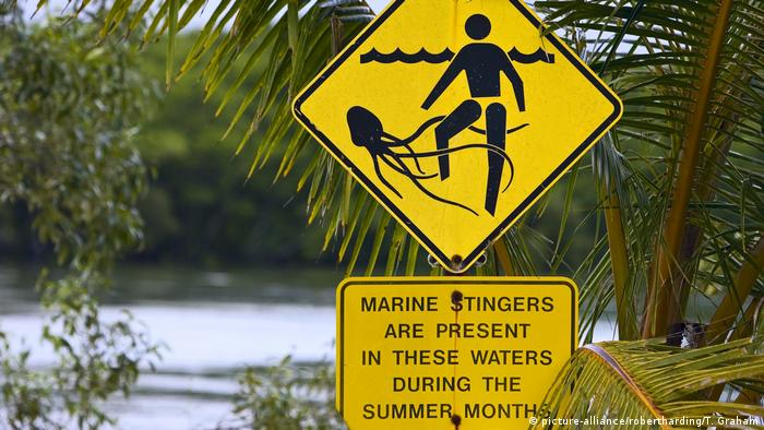 Jellyfish sting warning sign (picture-alliance/robertharding/T. Graham)