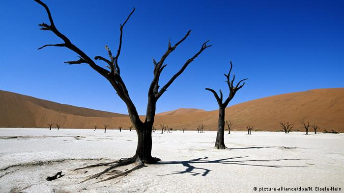 Afrikas Nationalparks (picture-alliance/dpa/N. Eisele-Hein)