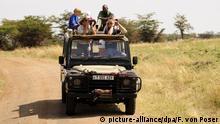 Touristen auf Fotosafari, Serengeti National Park, Tansania, Afrika | Verwendung weltweit, Keine Weitergabe an Wiederverkäufer.