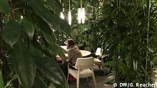 IMM, The House, offene Räume und Pflanzen als Wand