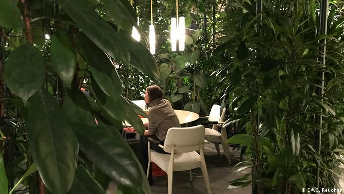 person sitting at a table surrounded by plants (DW/G. Reucher)