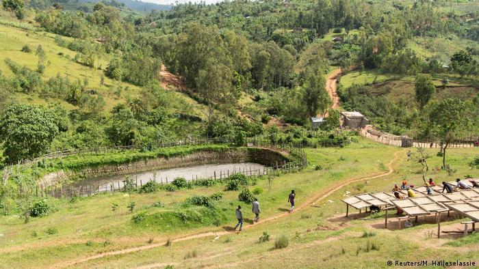 Kafeeernte in Äthiopien