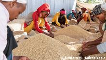 Women pick unwanted coffee beans from the final product just before packaging in Holiso cooperative of Shebedino district in Sidama, Ethiopia November 30, 2018. Picture taken November 30, 2018. REUTERS/Maheder Haileselassie