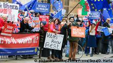 Großbritannien Protest gegen Brexit in London (picture-alliance/Zuma Press/Sopa/D. Haria)