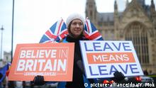 UK Pro-Brexit-Demonstrantin vor Parlamentsgebäude (picture-alliance/dpa/Y. Mok)