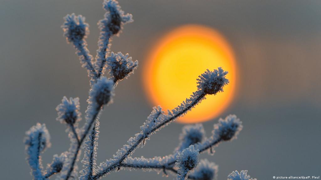 Winterzauber Und Winterwahnsinn Alle Multimedialen Inhalte Der