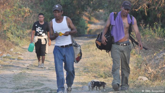 Migrantes atravessam a pé o caminho do México aos EUA