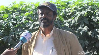 Äthiopien Haramaya University, Forschung Chaya-Pflanze | Kassu Mohammed, Forscher