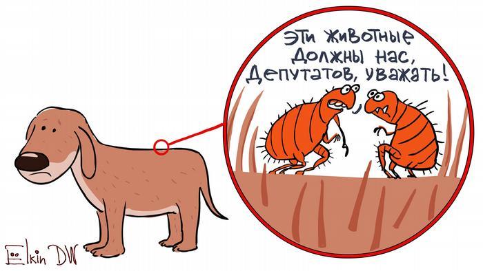 Блохи сидят на собаке и говорят: Эти животные должны нас, депутатов, уважать! (карикатура)