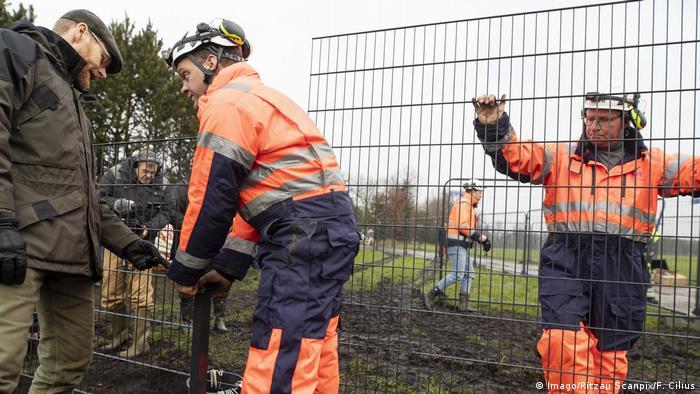 للحماية من حمى الخنازير الإفريقية أنشأت الدنمارك سياج الخنازير البرية على طول الحدود مع ألمانيا في عام 2019