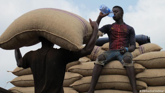 Ghana Kakaoanbau in der Krise (DW/Gerlind Vollmer)