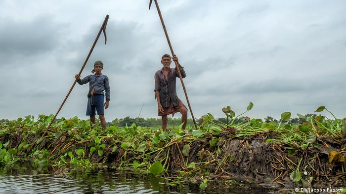 Farmers punt their floating gardens along canals in Gopalganj, Bangladesh