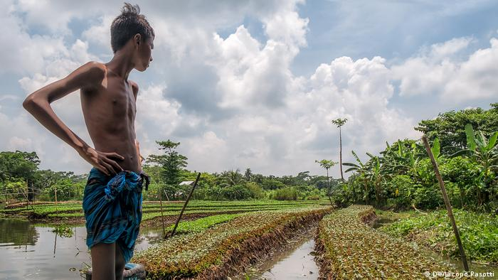 A boy looks out at floating gardens resting on the ground at low tide, in Pirojpun, Bangladesh