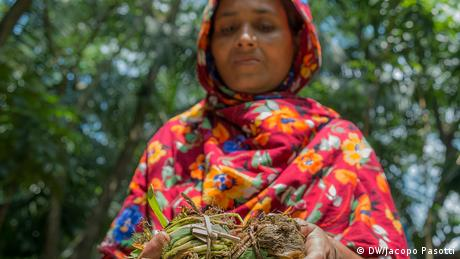 A farmer in Pirojpun, Bangladesh holds seeds ready to be planted on a floating garden