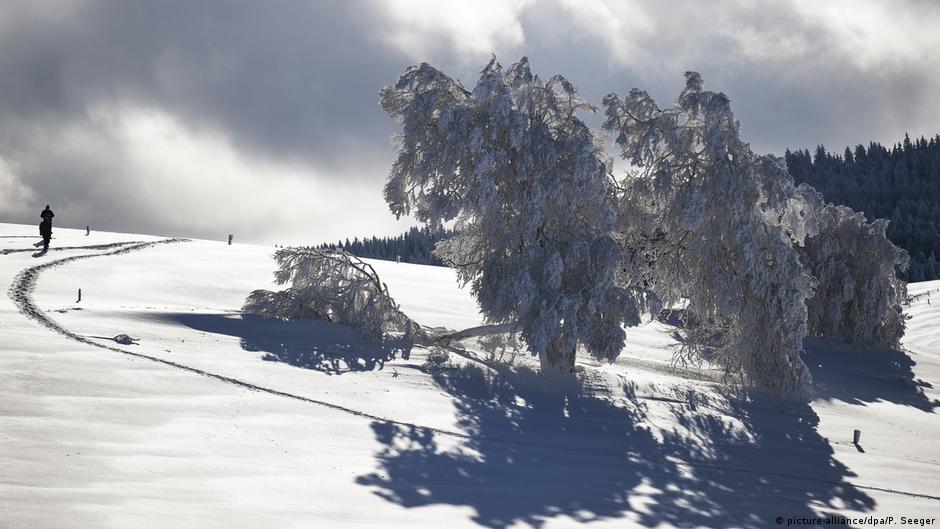 Шварцвальд горнолыжный курорт картинки