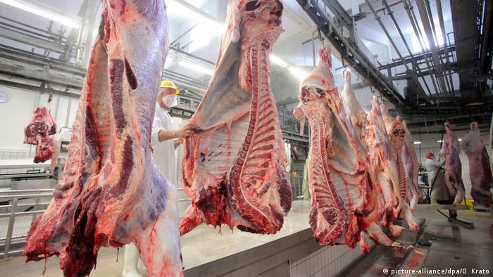Rinderhälften im Schlachthof