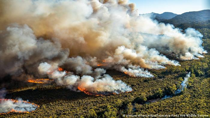 Aerial photo of bushfires in Tasmania, Australia, among forest with river channel in foreground (picture-alliance/dpa/Tasmania Parks And Wildlife Service)