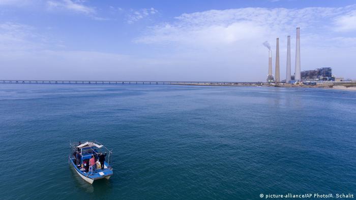 Israel Chadera - hohe Anzahl von Haien vor der Küste (picture-alliance/AP Photo/A. Schalit)