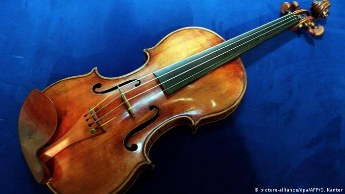 The perfect sound of a Stradivari violin is based on the wood it is made of.