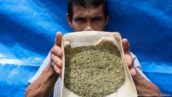 Indonesien Kratom (Getty Images/AFP/L. Anderson)