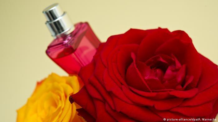 Rosen in der Kosmetik (picture-alliance/dpa/A. Warnecke)