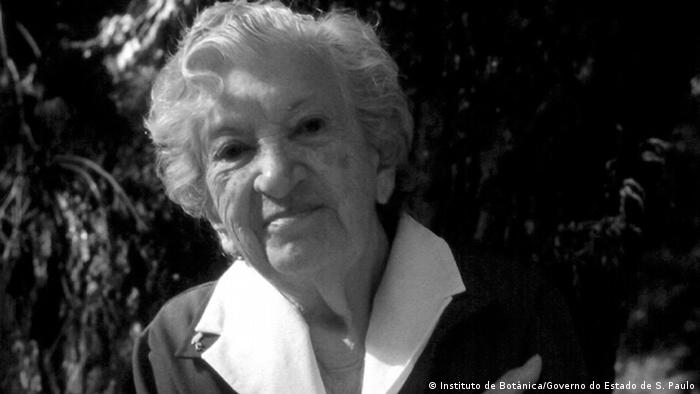 Graziela Maciel Barroso (Instituto de Botânica/Governo do Estado de S. Paulo)