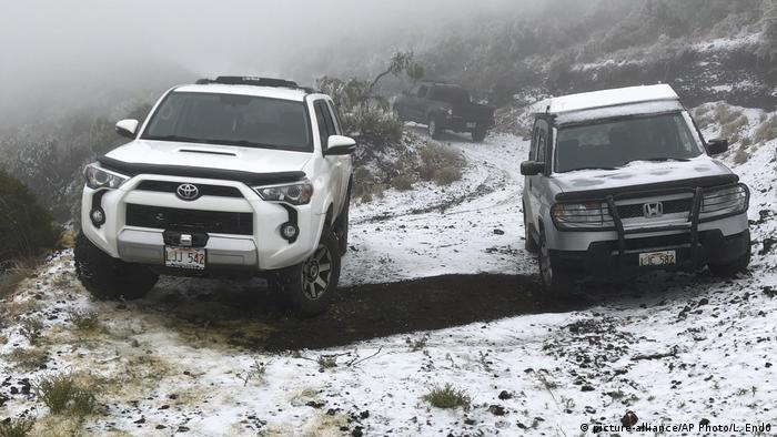 Snow in Polipoli Spring State Recreation Area in Kula, on the Hawaiian island of Maui (picture-alliance/AP Photo/L. Endo)
