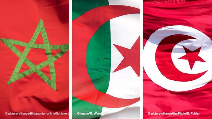 Kombibild - Flaggen von Marokko Algerien und Tunesien