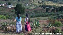 Mexiko Ökotourismus und Pulque