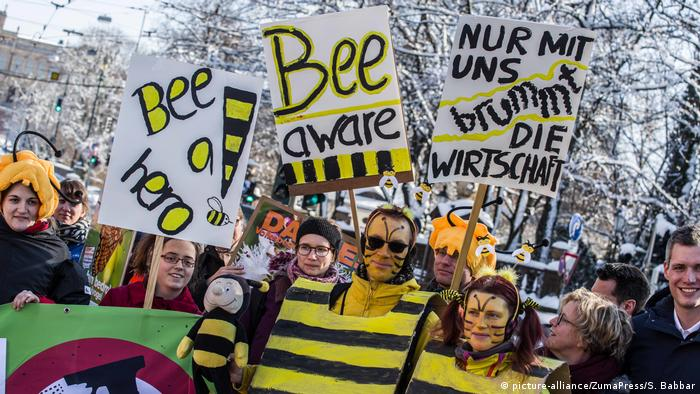 'Save the bees' activists hold signs (picture-alliance/ZumaPress/S. Babbar)