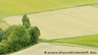 H EE ζητά μείωση των φυτοφαρμάκων στις καλλιέργειες