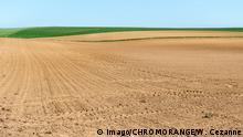 Deutschland Landwirtschaft - Ackerland, Monokulturen