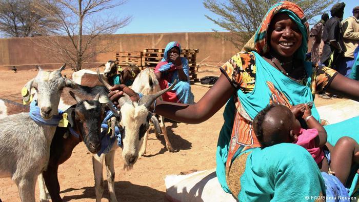 Cette jeune Malienne a reçu des chèvres dans le cadre du programme de la FAO, dans la région de Kayes au Mali, en mars 2016.
