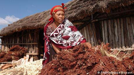 A woman stands in front of a long wooden hut next to a pile of dried plants